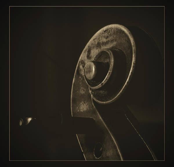 Photograph -  Antique Violin 1732.40 by M K Miller