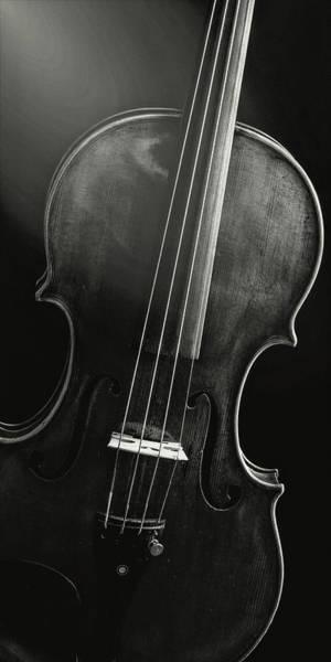 Photograph -  Antique Violin 1732.48 by M K Miller