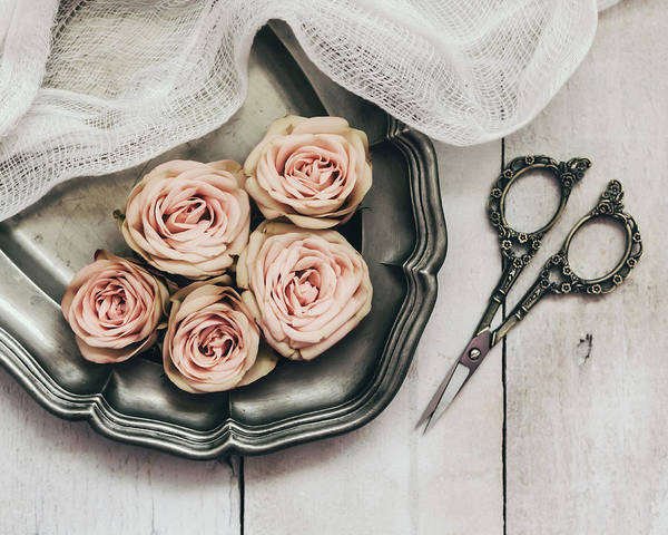 Photograph - Antiqued Roses by Kim Hojnacki