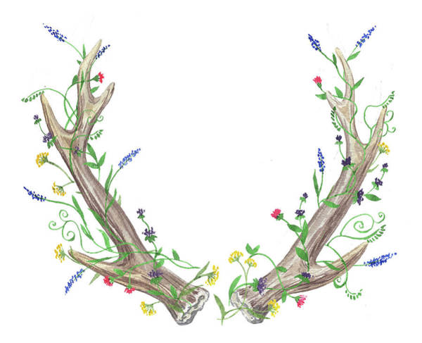 Antlers Painting - Antlers And Wild Flowers Watercolor by Irina Sztukowski