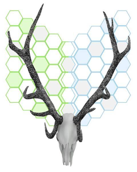 Deer Skull Digital Art - Antlers Honeycomb Pattern by Early Kirky