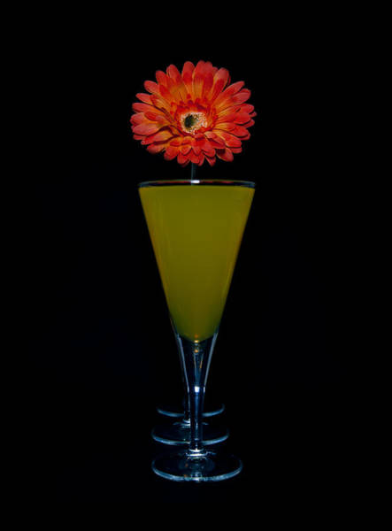 Wall Art - Photograph - Anyone For Cocktails by Nigel Jones