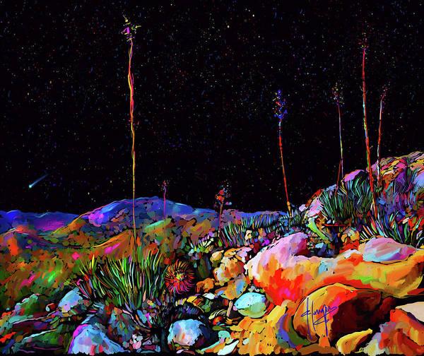 Painting - Anza Borrego Desert Rocks by DC Langer