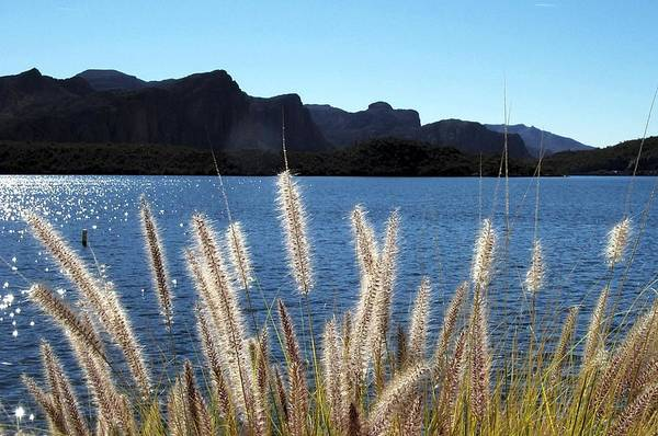 Photograph - Apache Lake Superstition Mountains by NaturesPix