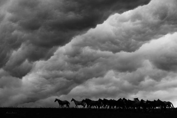 Wall Art - Photograph - Apocalypse by Artur Baboev