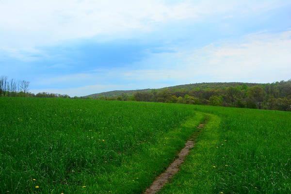 Photograph - Appalachian Trail In Northern Maryland by Raymond Salani III