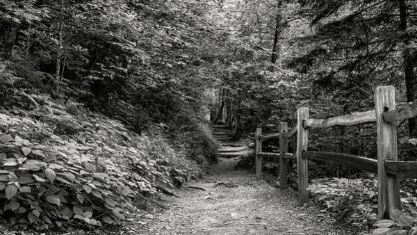 Wall Art - Photograph - Appalachian Trail Trek by Stephen Stookey