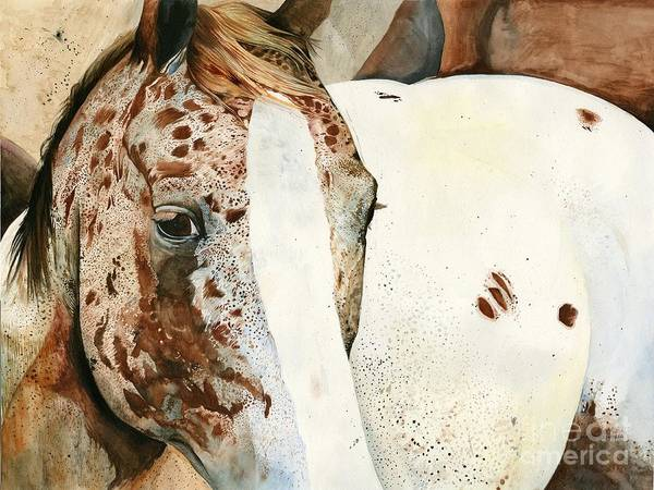 Appaloosa Drawing - Appaloosa by Aprille Thompson