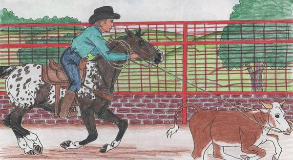 Appaloosa Drawing - Appaloosa by Karen Hesse
