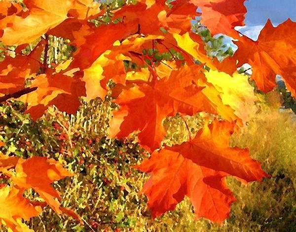 Okanagan Valley Digital Art - Applause For Autumn by Will Borden