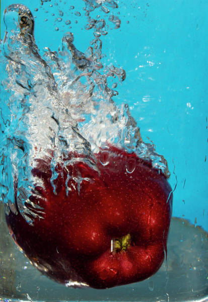 Photograph - Apple Bath by Garvin Hunter