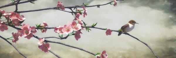 Wall Art - Digital Art - Apple Blossom by Cynthia Decker