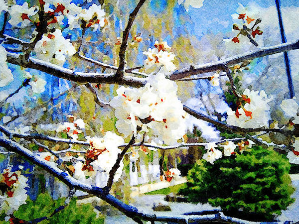 Digital Art - Apple Blossoms by Donald S Hall