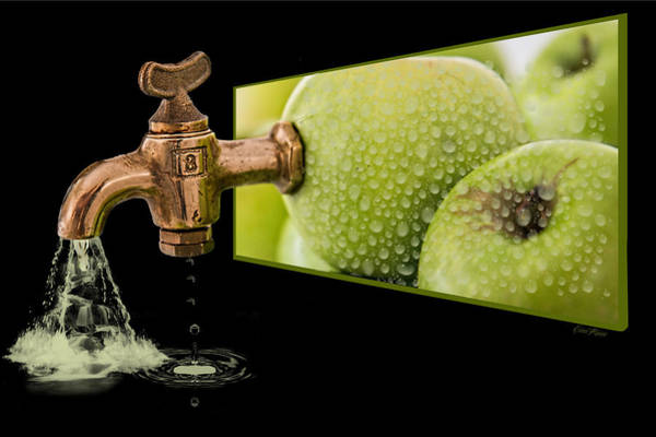Photograph - Apple Juice by Ericamaxine Price