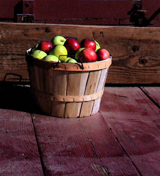 Wall Art - Photograph - Apple Pickens by Joanne Coyle
