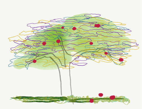 Digital Art - Apple Tree  by Barbara Jacobs
