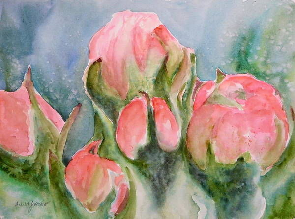 Painting - Apple Tree Buds by Anna Jacke