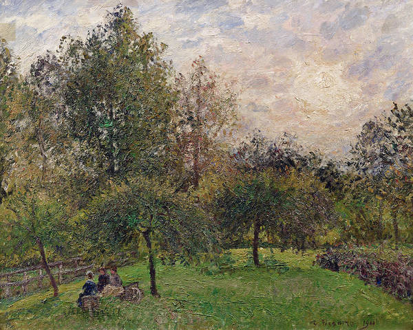 Apple Orchard Painting - Apple Trees And Poplars In The Setting Sun by Camille Pissarro