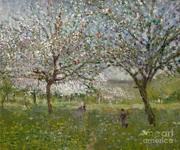 Apple Orchard Painting - Apple Trees In Flower by Ernest Quost
