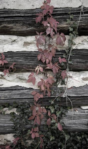 Photograph - Appleberry Mountain 2 by Pete Hellmann