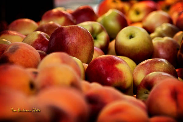 Wall Art - Photograph - Apples In The Market by Tom Buchanan