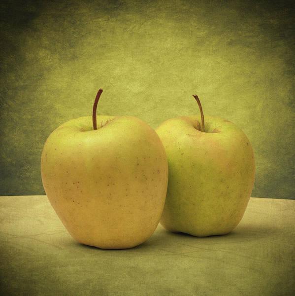 Photograph - Apples by Zapista Zapista