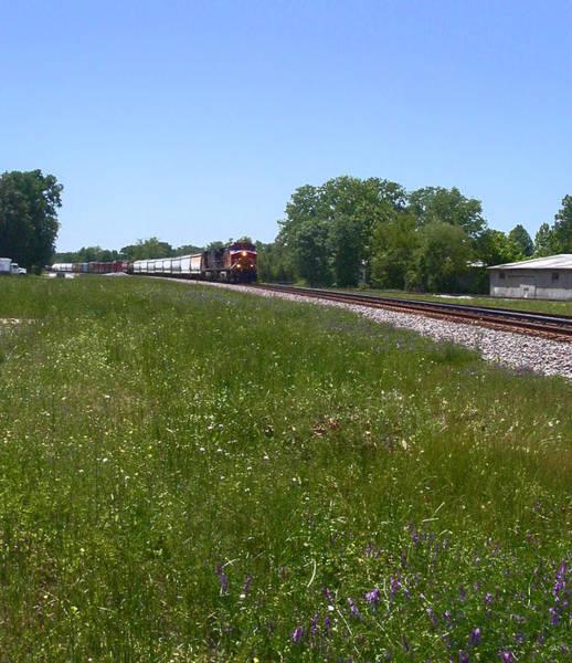 Photograph - Approaching Train by Anne Cameron Cutri