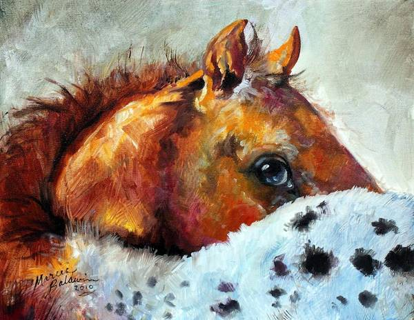 Painting - Appy Colt by Marcia Baldwin