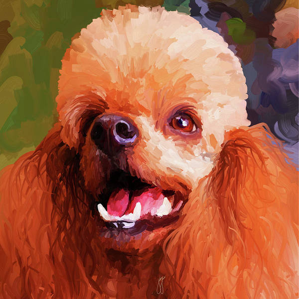 Painting - Apricot Poodle - Square by Jai Johnson