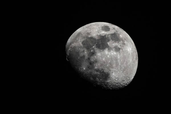 Photograph - April Moon 2018 by Philip Rodgers