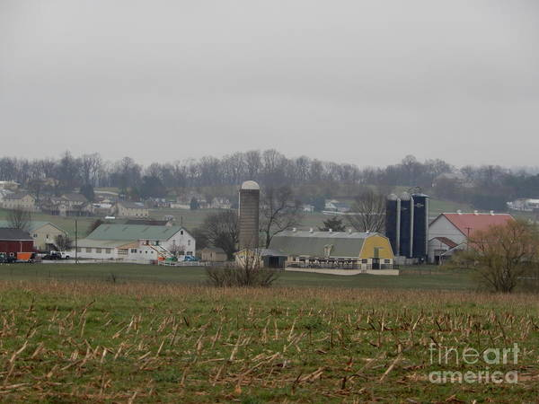 Photograph - April Morning On The Amish Homestead by Christine Clark