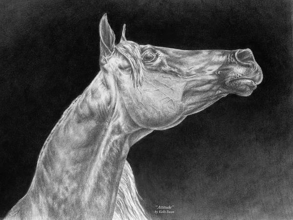 Drawing - Arabian Horse Attitude Print by Kelli Swan