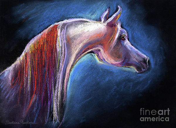 Painting - Arabian Horse Equine Painting by Svetlana Novikova