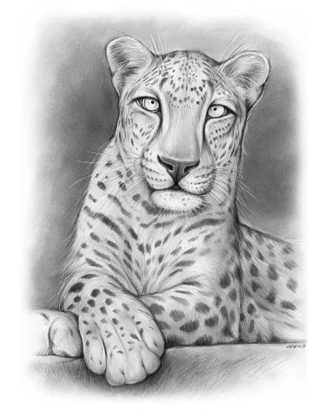 Arabian Drawing - Arabian Leopard by Greg Joens