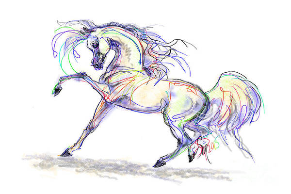 Digital Art - Arabian Stallion Talk by Stacey Mayer