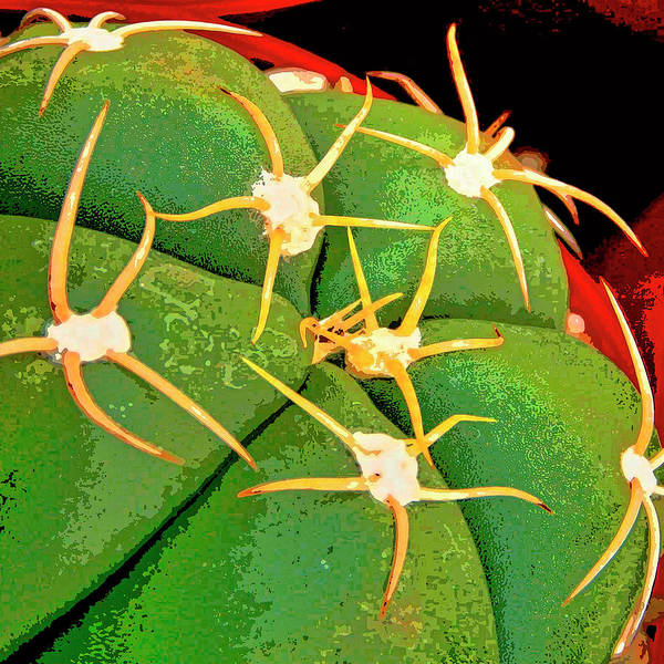 Cactus Mixed Media - Arachnids by Dominic Piperata