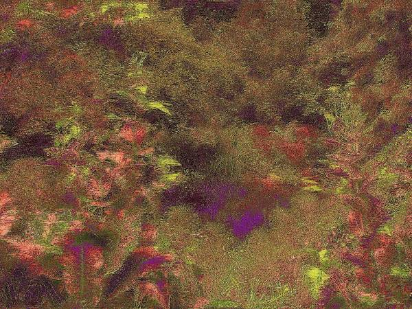 Arbor Digital Art - Arboretum Pond by Tim Allen