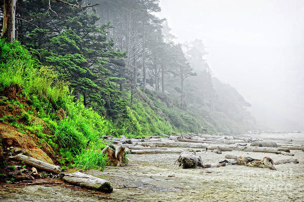Photograph - Arcadia Beach In Morning Fog by Lincoln Rogers