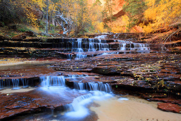 Photograph - Arch Angel Waterfalls In Zion by Pierre Leclerc Photography