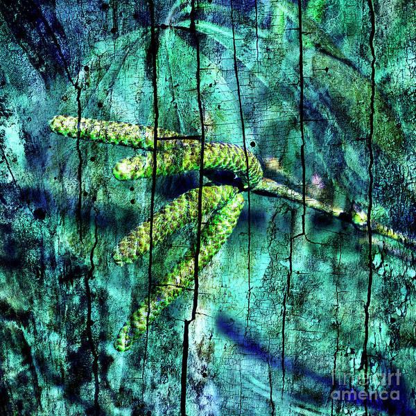 Photograph - Archaic Blue Dream by Silva Wischeropp