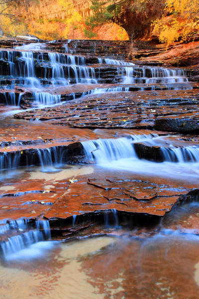 Photograph - Archangel Falls In Zion by Pierre Leclerc Photography