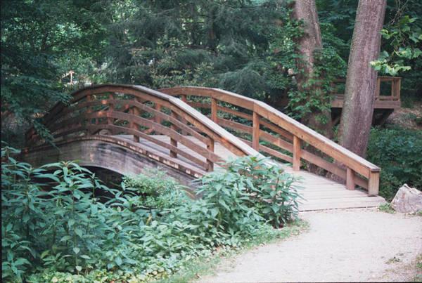 Photograph - Arched Bridge by Allen Nice-Webb