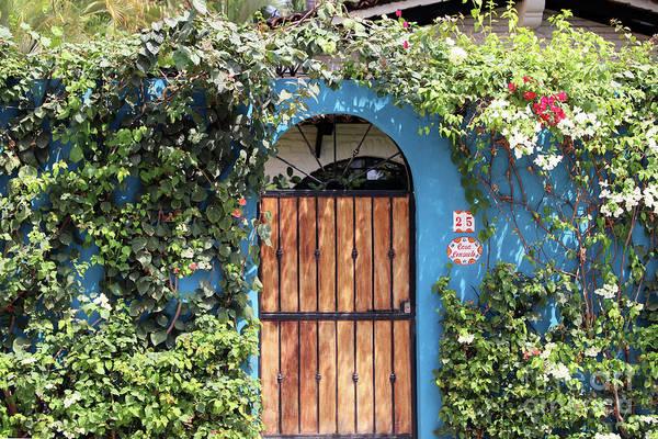 Photograph - Arched Door by Teresa Zieba