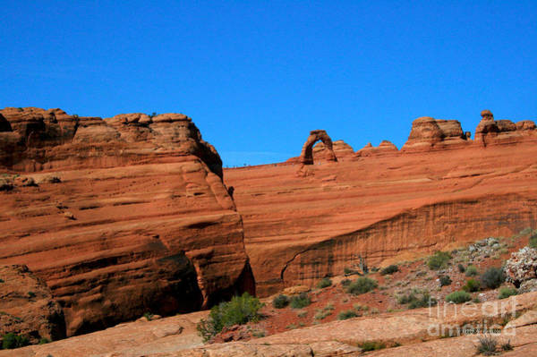 Wall Art - Painting - Arches National Park, Utah Usa - Delicate Arch by Corey Ford