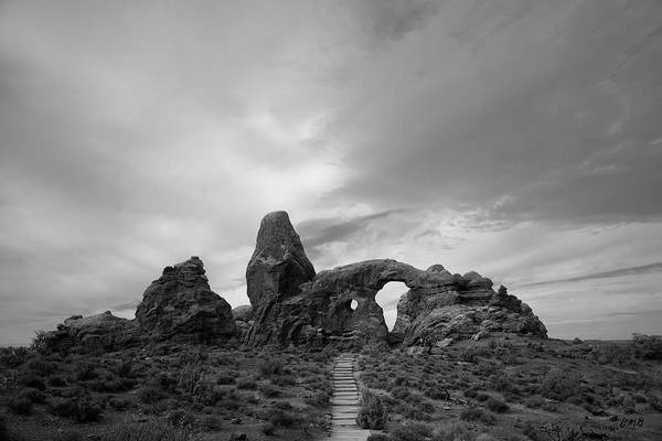 Photograph - Arches Np X Bw by David Gordon