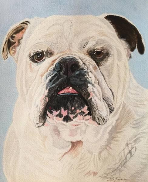 Painting - Archie by Sonja Jones