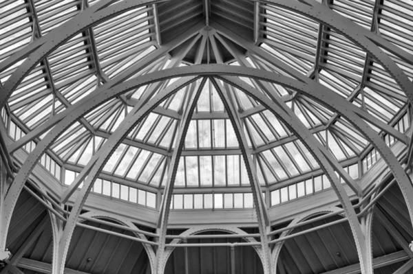 Photograph - Arching by Christi Kraft