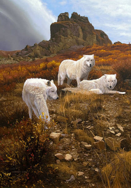 Arctic Wolf Painting - Arctic Council by Derek Wicks