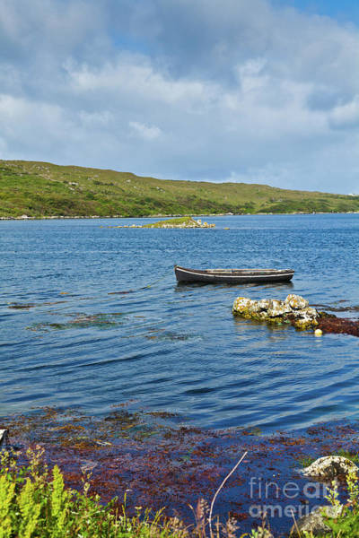Ardmore Photograph - Ardmore Bay by Gabriela Insuratelu