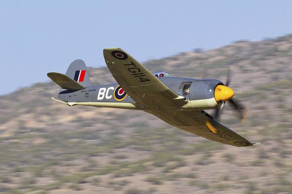 Hawker Sea Fury Photograph - Argonaut by Rick Pisio